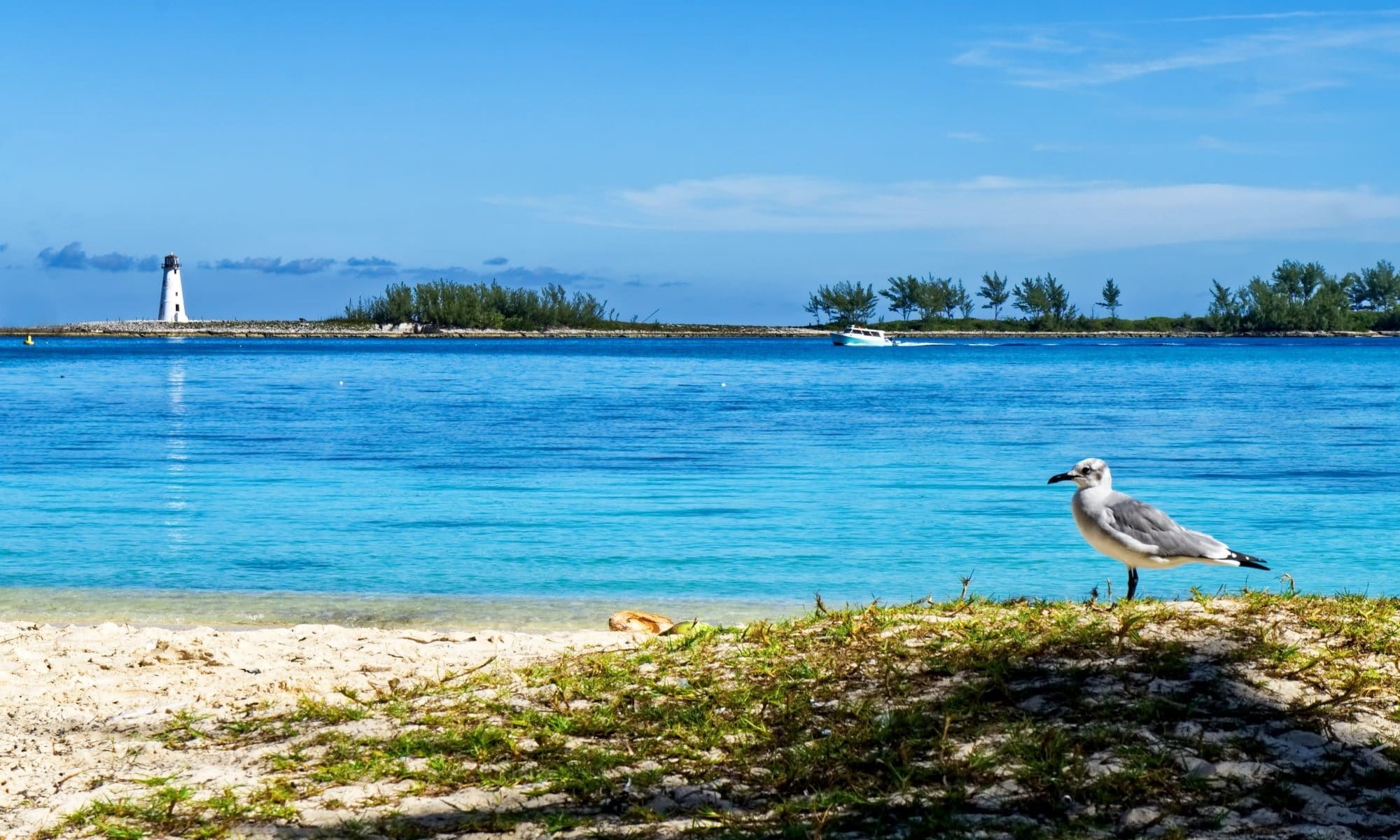 The Bahamas Permanent Residency Program | Bahamas Guides in Travel To Bahamas On Green Card